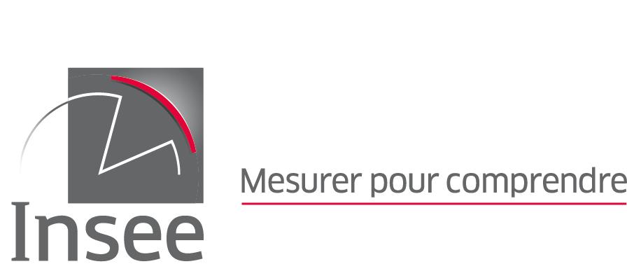 Insee - Rapport d'activité 2019